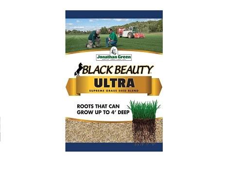 Jonathan Green Black Beauty Ultra Grass Seed