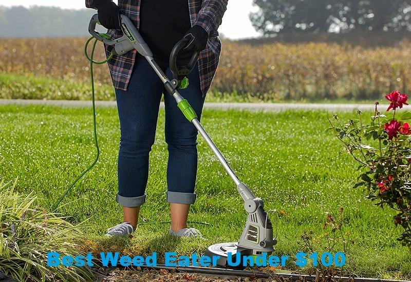 Best Weed Eater Under $100