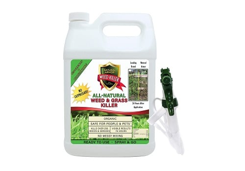 Natural Armor Weed and Grass Killer For All Pavers