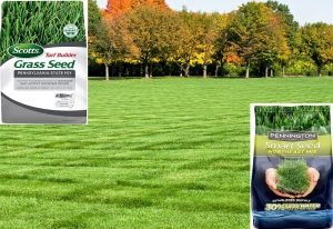 Best Grass Seed For PA (Pennsylvania)