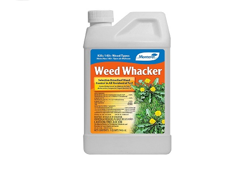 Monterey Herbicide Concentrate, Weed Killer for Lawns