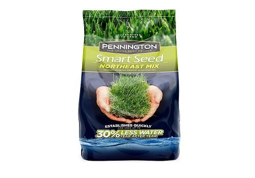 Pennington 100526638 Smart Northeast Mix Grass Seed