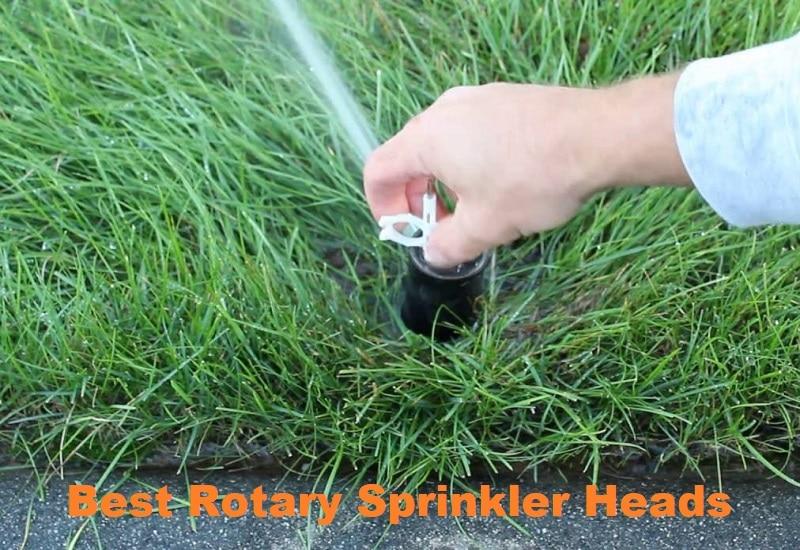 Best Rotary Sprinkler Heads