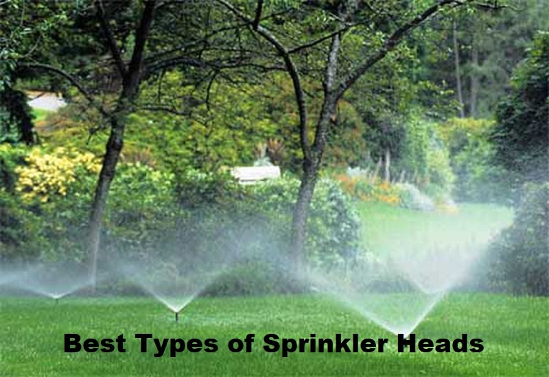 Best Types of Sprinkler Heads